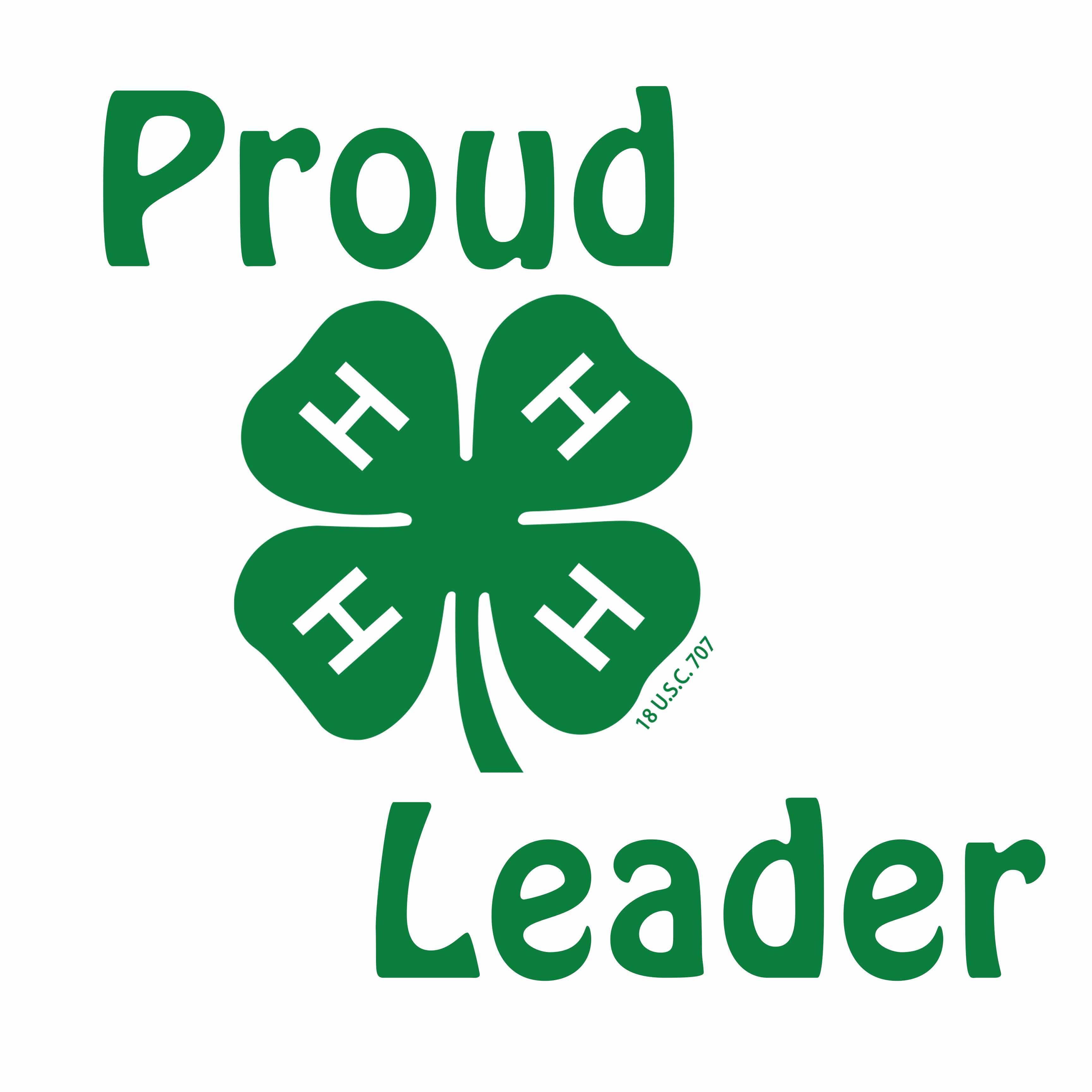 Image result for 4h leaders